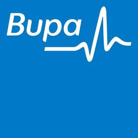 BUPA HI HOLDINGS PTY LTD