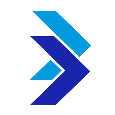 Blue State Digital
