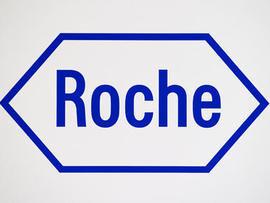 Roche Molecular System Inc