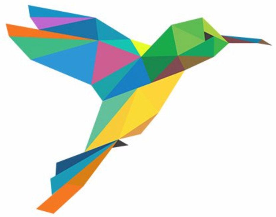 Hummingbird Technologies Ltd