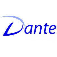 Dante Consulting, Inc.