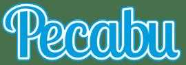 Pecabu Inc.