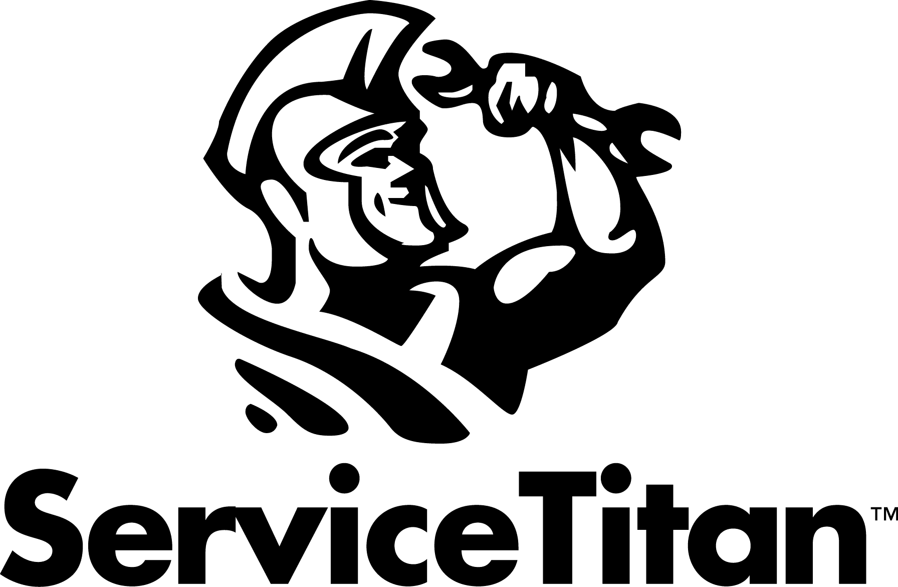 Servicetitan, Inc.