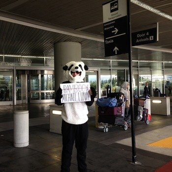 D2iQ - SPOTTED: Mesosphere Panda doing an airport pick up! We take pride in welcoming our newbies aboard the Rocket Ship.
