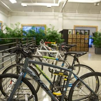 Segment - We are bike friendly and offer every new team member a stipend to purchase their very own bike! Yay for green living!