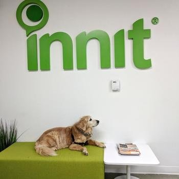 Innit - Doggie Day at Innit!