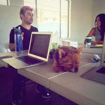 StyleSeat - Growth meeting. Not all members of the team work as hard as others unfortunately.