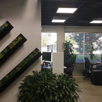 Synthego Corporation - We love plants, we love green, we love our office space!
