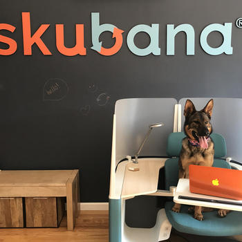 Skubana - QA Testing Is Ruff...