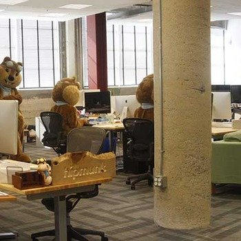 Hipmunk - We have an office filled with chipmunks