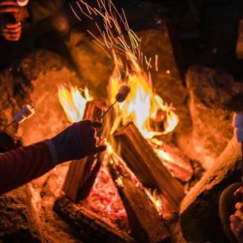 Hipcamp - Team s'mores around the campfire