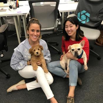 SecurityScorecard - Celebrating Bring Your Dog to Work Day with Teddy and Poundcake!