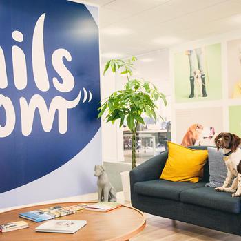 tails.com -