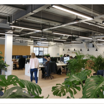SamKnows - We work in a bright, sunny and plant filled central London office.