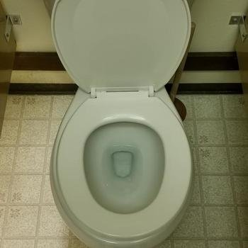 CrystalCommerce - We have a 1.4 employee:toliet ratio, which means you don't have to share a toilet with a bunch of people.