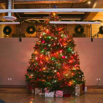 Tellapart, Inc. - Christmas Tree