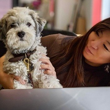 Hearsay Systems - Hearsay pups help us out with our work