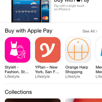 Peekabuy - StyleIt as one of the best example apps with the Buy with Apple Pay support.