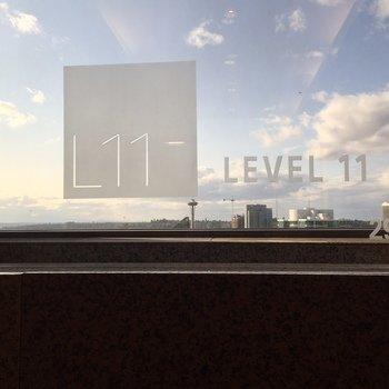 Level 11 - Company Photo