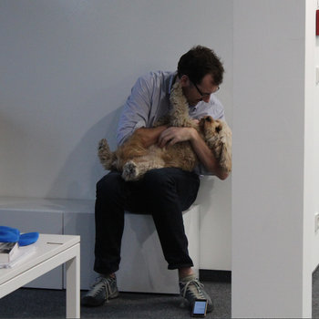 Brandwatch - Important strategy meetings. CEO & CCO (Chief Canine Officer).