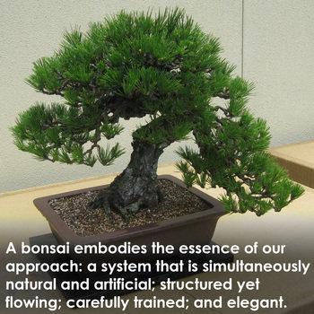 Bonsai - Company Photo