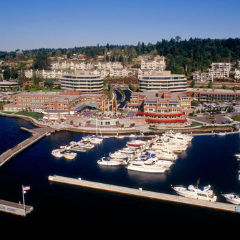 HyperFish - Our offices are on the Kirkland waterfront with great views, loads of light and plenty of amenities nearby.